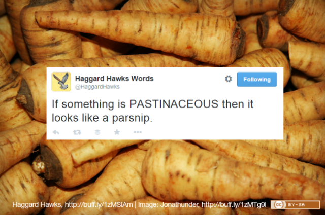 @HaggardHawks Tweeting about the word 'pastinaceous'